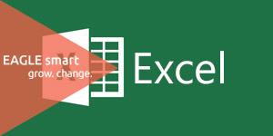 EAGLE smart trening microsoft excel